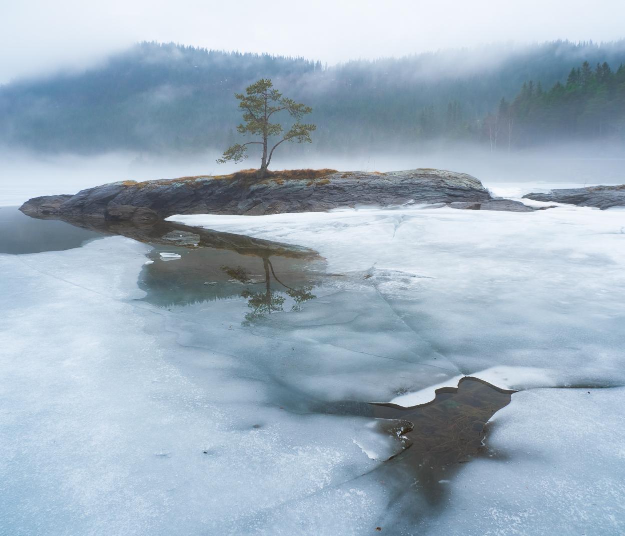 Foto: Ivar Bjørdalsbakke
