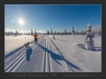 Perfekt søndag i Winter Wonderland Trysil :-) #Trysil #Skistar #Bestofnorway #Bestofscandinavia #Worldunion #Canon #Conlight #Allemannsretten #Ignorway #Igscandinavia #Landscape #Ilovenorway #Mittnorge #Norges_fotografer #Visitnorway #Vinter #yrbilder #yrno #natt #vinternatt #stjernehimmel #Solberglia #trikkeskinner #langrenn