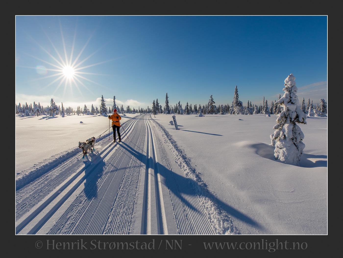 Foto: Henrik Strømstad